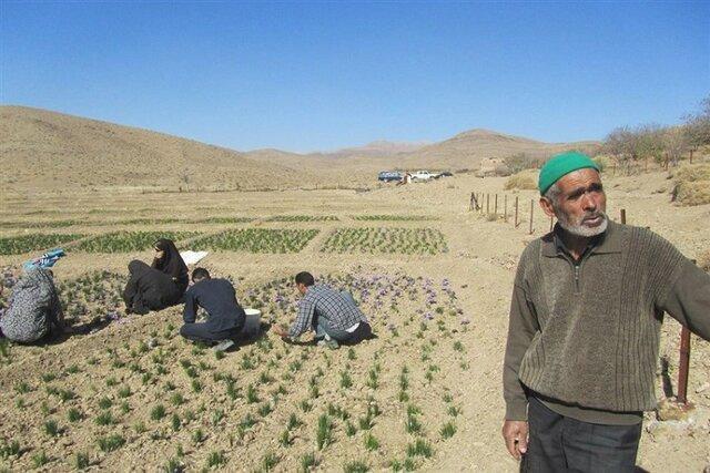 اجرای طرح روستای بدون بیکار در بیش از 100 روستای کشور